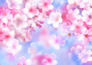 flower-back1470