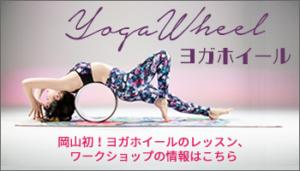 yogawheelBn